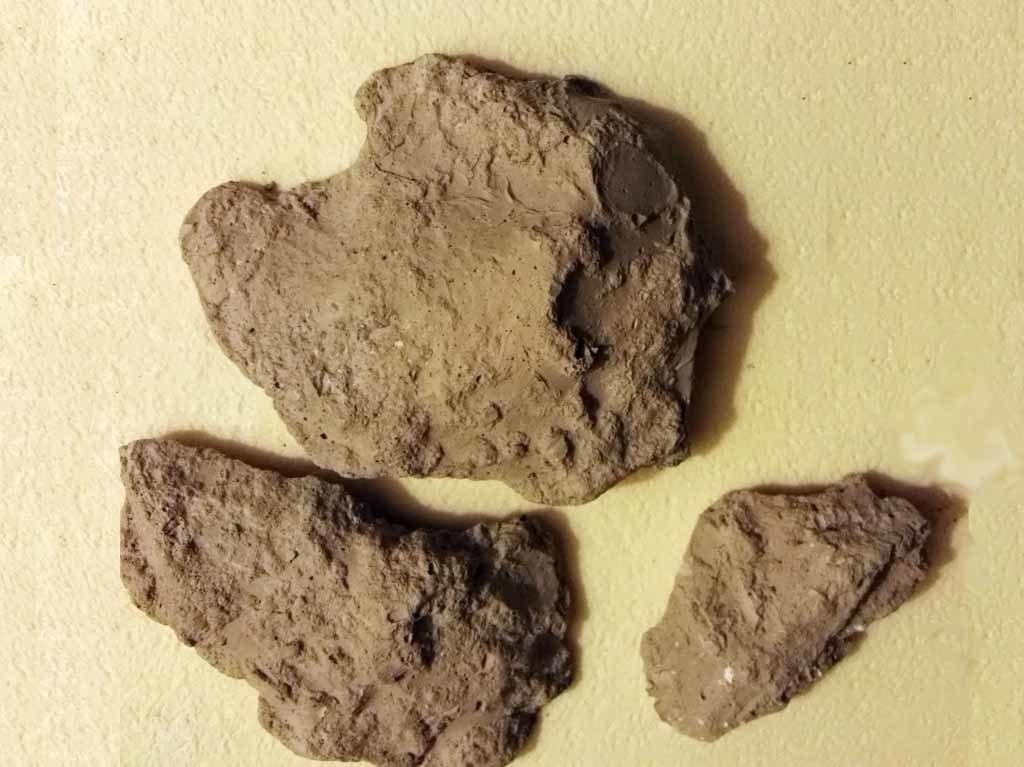 Rocce di argilla