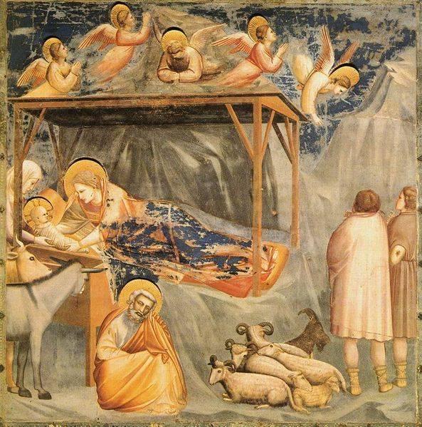 Natività Gesù - Giotto