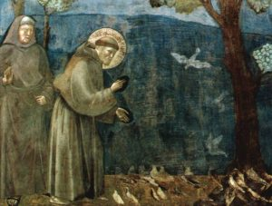 San Francesco di Giotto