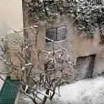 Video tutorial: diorama con neve